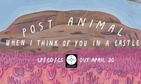 Post Animal at The Fox Cabaret