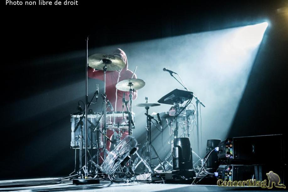 DSC8630 - Shaka Ponk offre un concert d'exception à l'AccorHotels Arena