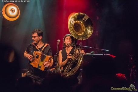 7 - Ogres de Barback/Bal Brotto Lopez, duo de groupes détonnant