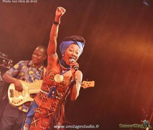 IMG 5873 Copier 300x255 - Fatoumata Diawara en concert
