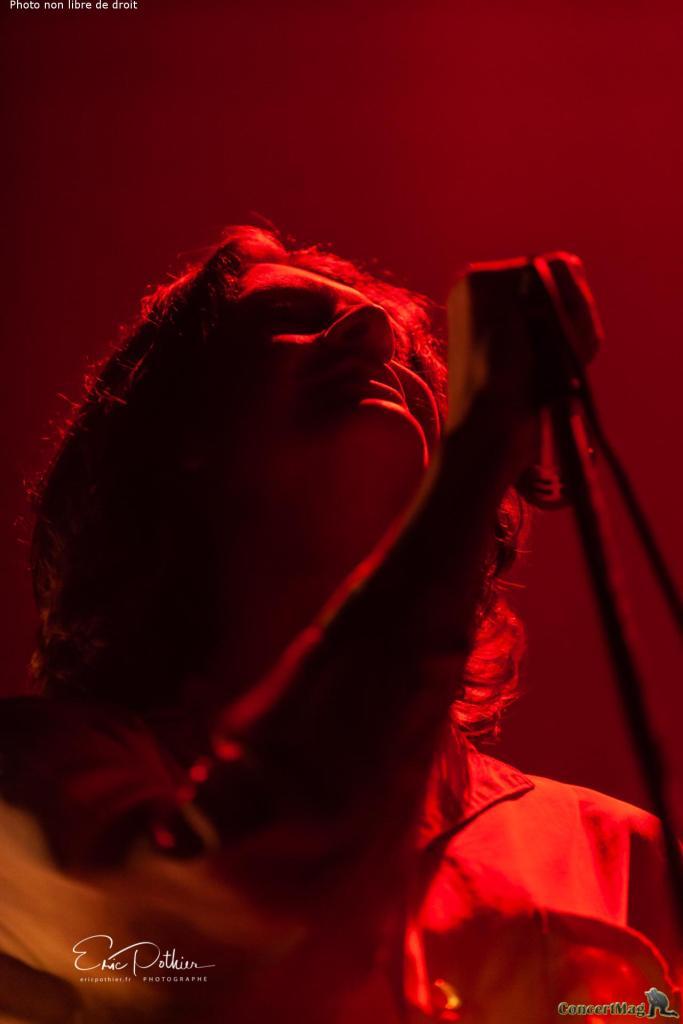 Blossoms 9 683x1024 - The Kooks au Zénith de Paris, un concert placé sous le signe de la nostalgie et de la bonne humeur.