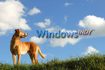 windows indy