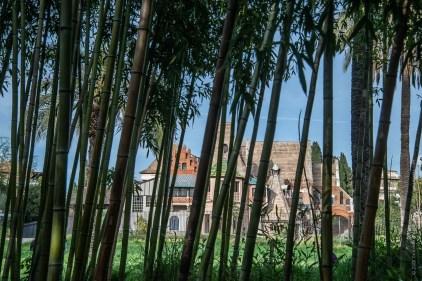 La casa delle civette oltre il bosco di bambù
