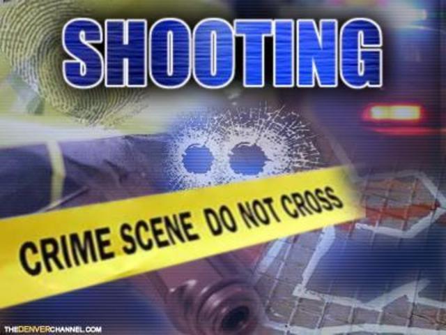 shooting_1483371067687.jpg