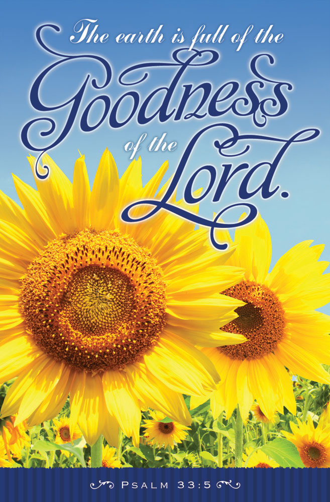 Church Bulletin 11  Inspirational  Praise  Goodness of the Lord Pack of 100