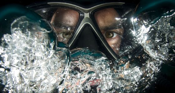 Frogman: a scientific lens on the humane