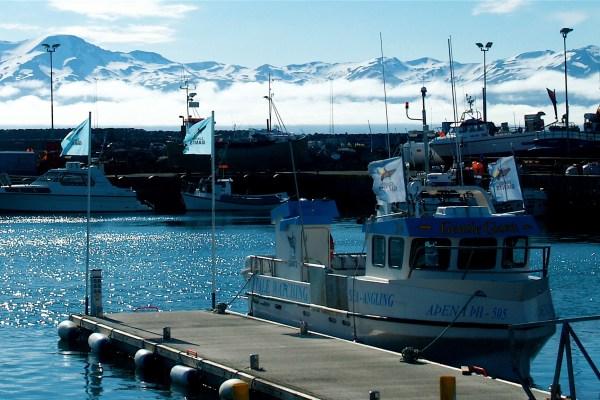 The hidden grandeur of Northern Iceland
