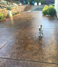 Concrete Stain and Sealer Patio Makeover | Concrete Exchange