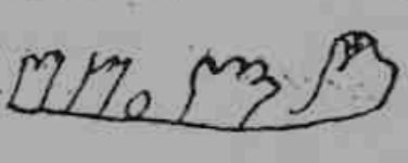 Signo conde Gonzalo Fernández. Copia A
