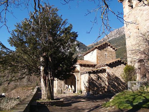 Tejo de Santa María de Lebeña antes de 2007