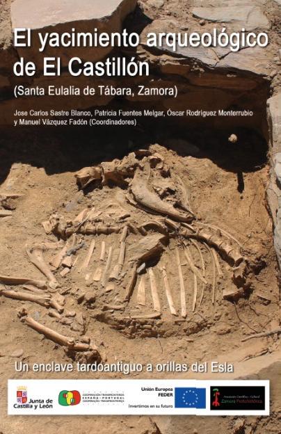 El yacimiento arqueológico de El Castillón (Santa Eulalia de Tábara, Zamora) Un enclave tardoantiguo a orillas del Esla - Libro