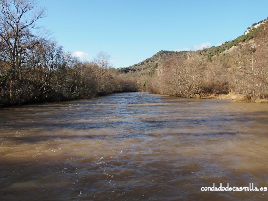El río Ebro a su paso por San Pedro de Argés (Burgos)