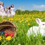 Menu di Pasqua senza stress per gli Amministratori di condominio - Marco Sampietro Catering Grasch
