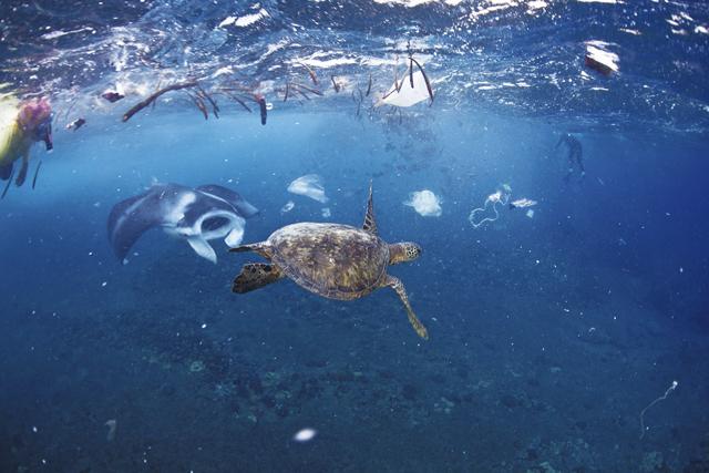 Plastikmüll auch an exotischen Gegenden: Die Verschmutzung der Meere hat auch die zu Chile gehörende Osterinsel erreicht.