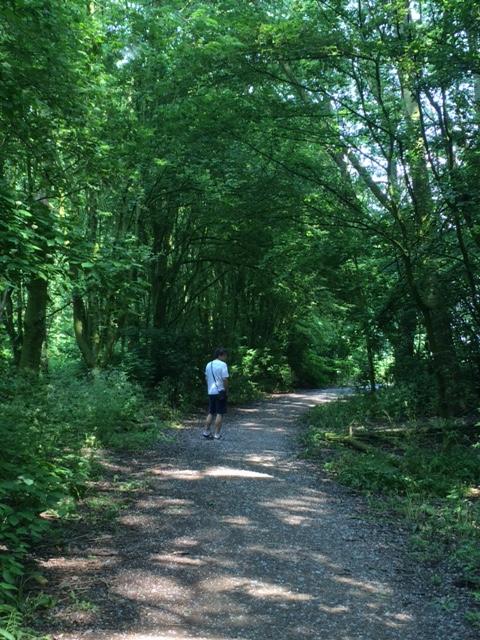 Dalam hutan. Jalan-jalan begini dalam bahasa Belanda namanya wandelen
