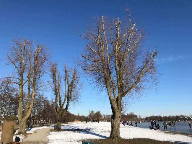 Salju dan langit biru