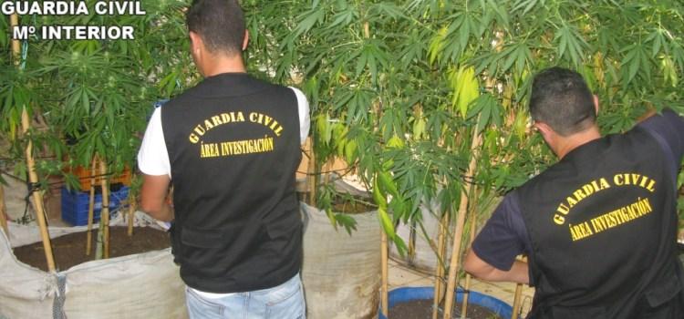 La Guardia Civil de Canals detiene a una persona por tráfico de drogas en la localidad de Llanera de Ranes