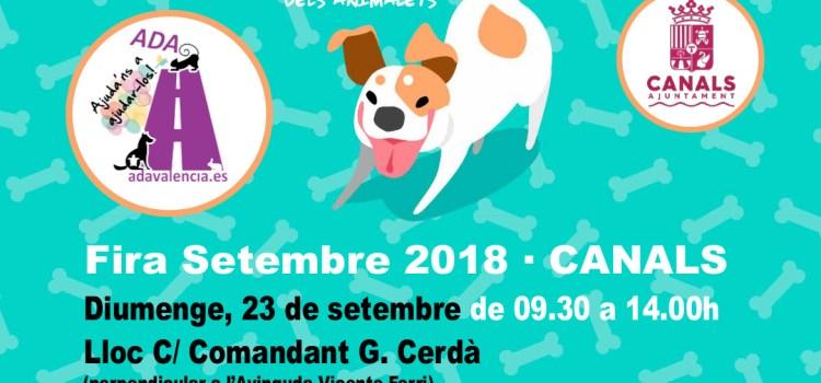 III Concurs Popular Caní en Canals