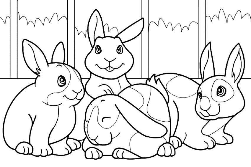 Conejos para colorear :: Imágenes y fotos