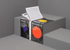Nowness IIT Architecture Chicago
