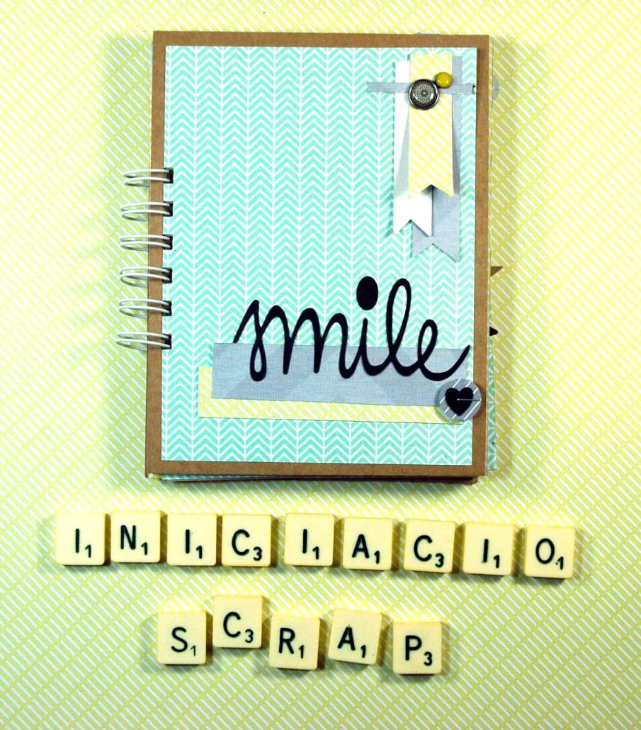 iniciacio_scrap_IV_00w