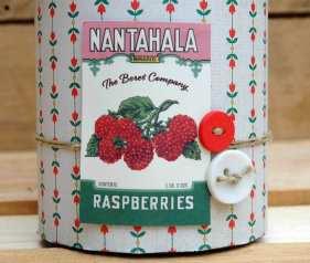 nantahala_02w