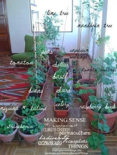 Foto: Blog makingsenseofthings.info