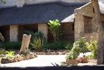 New Listing : Madidaba Game Lodge Conference Venue in Cullinan, Dinokeng, Pretoria, Gauteng