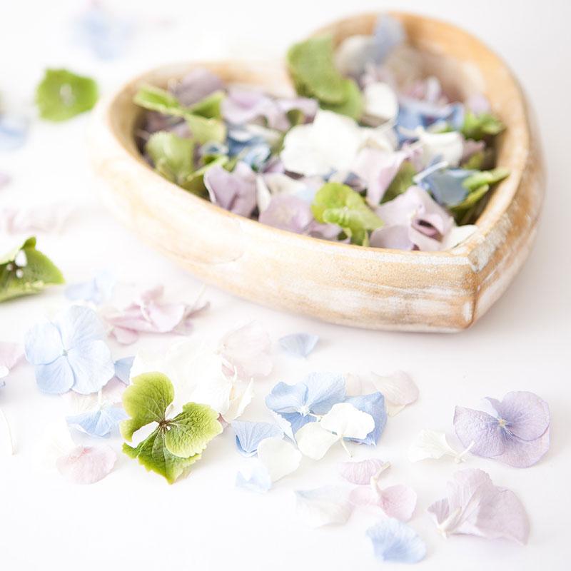 Hydrangea Petal Confetti - hydrangea petals wedding confetti