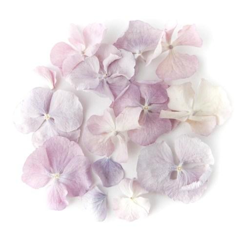 Vintage Lilac Hydrangea Confetti