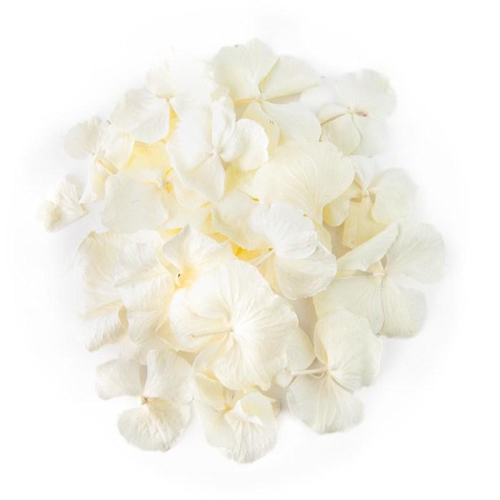 White Hydrangea Confetti