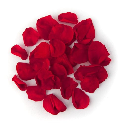 Red Coloured Rose Petals
