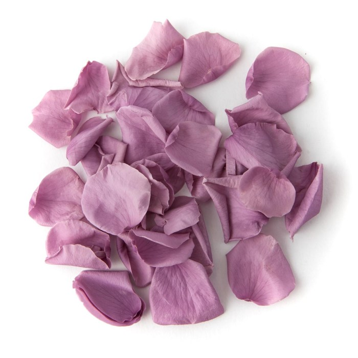 Lavender Coloured Rose Petal