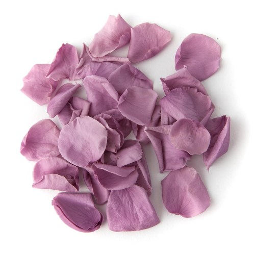 Lavender Coloured Rose Petal