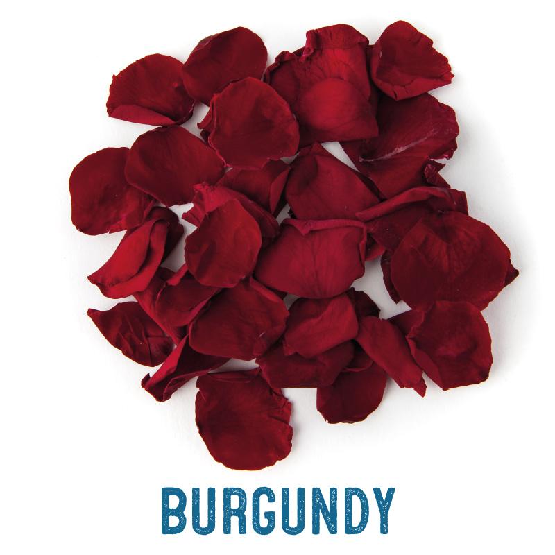 Burgundy coloured Rose Petal Confetti