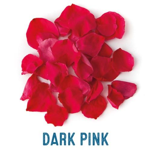 Dark Pink coloured Rose Petal Confetti