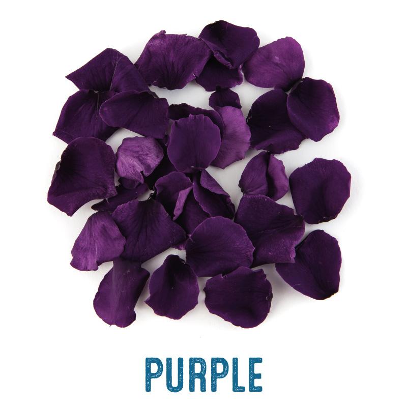Purple coloured Rose Petal Confetti