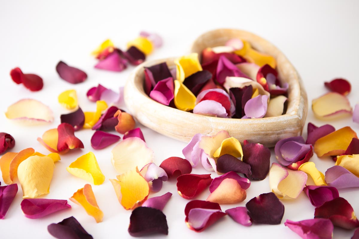 Rose Petals - Large Natural Rose Petals