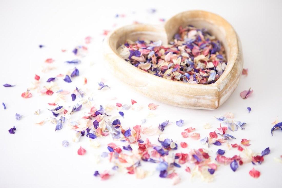 Petal Confetti - Delphinium Petal heart