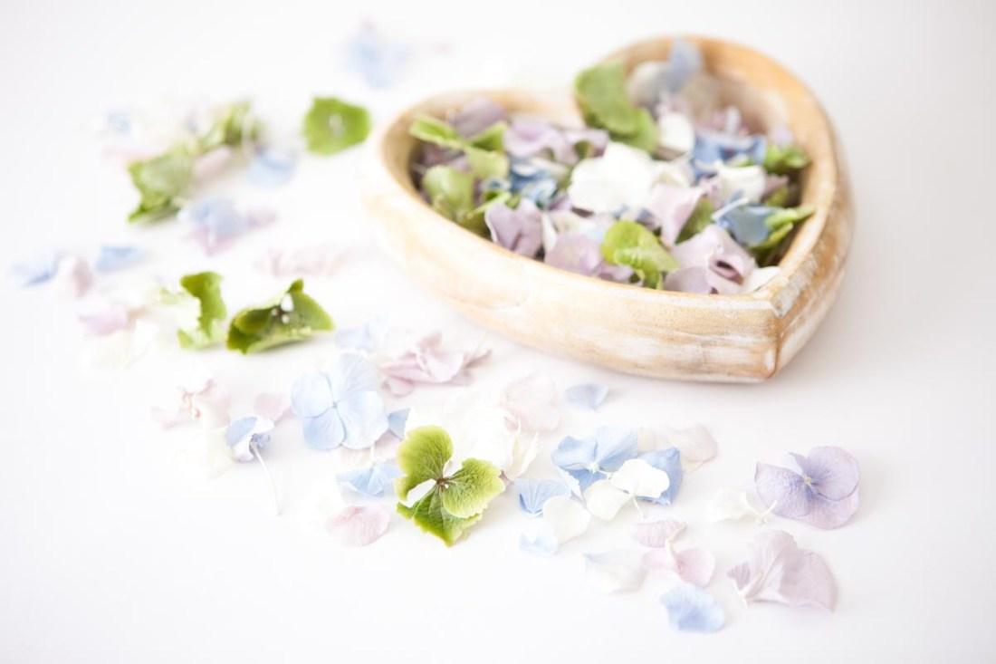 Petal Confetti - Hydrangea Petal heart