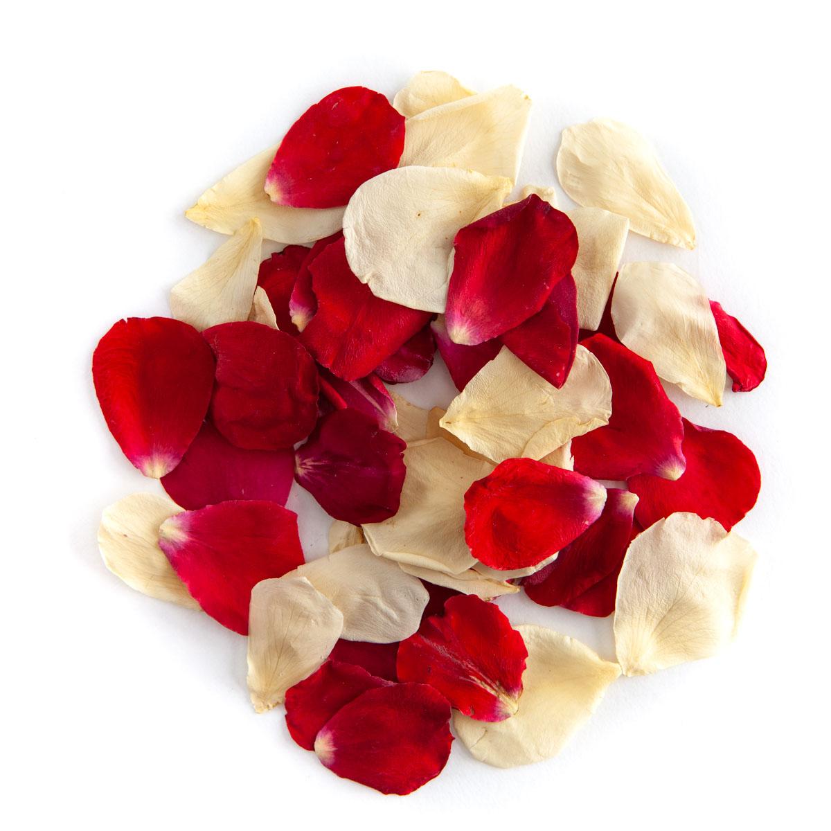 Red & Cream rose petals - Biodegradable Rose Petal Confetti - Real Flower Petal Confetti