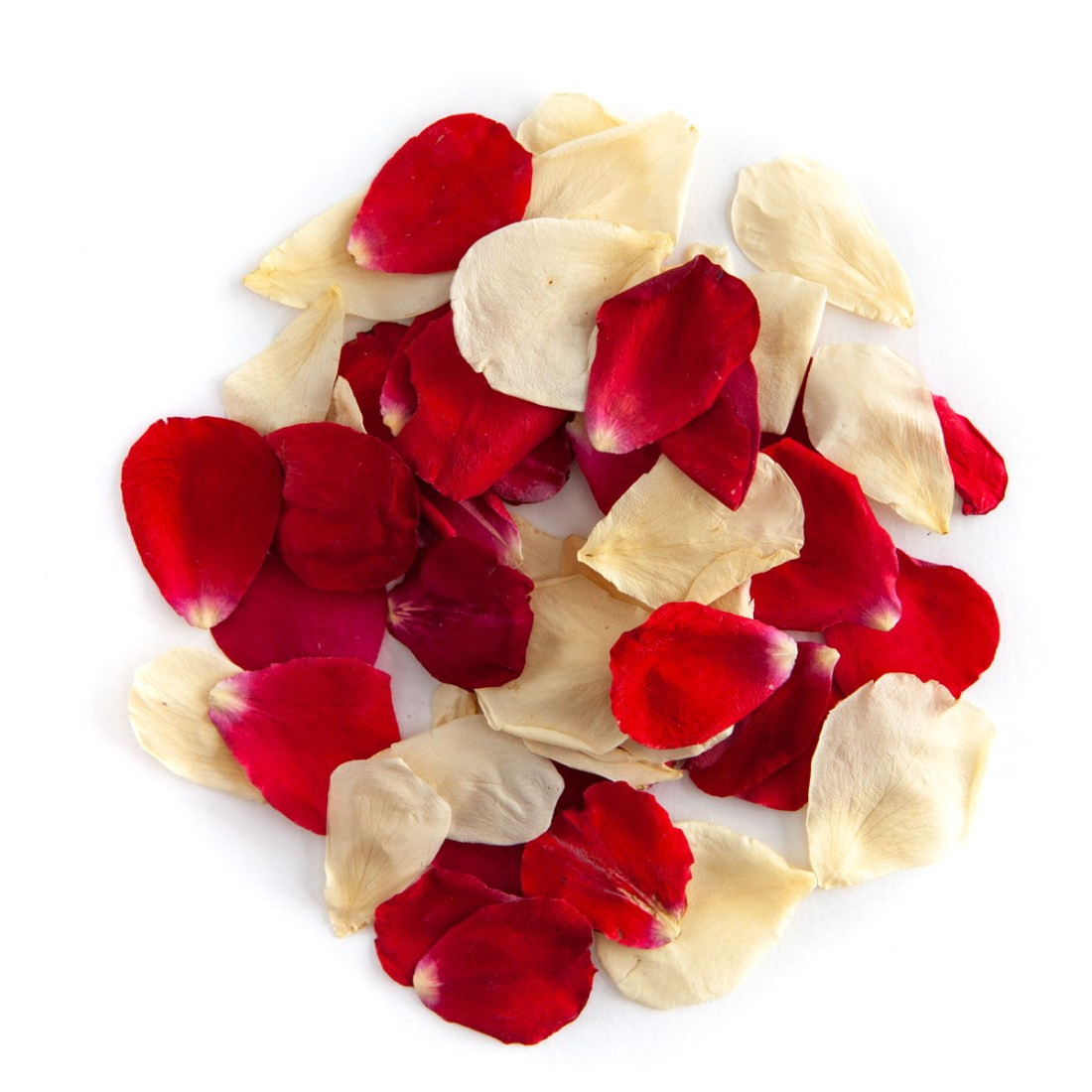 Red & Cream rose petals - Biodegradable Rose Petal Confetti - Real Flower Petal Confetti