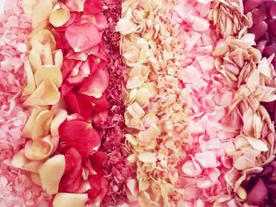 Pink confetti petals