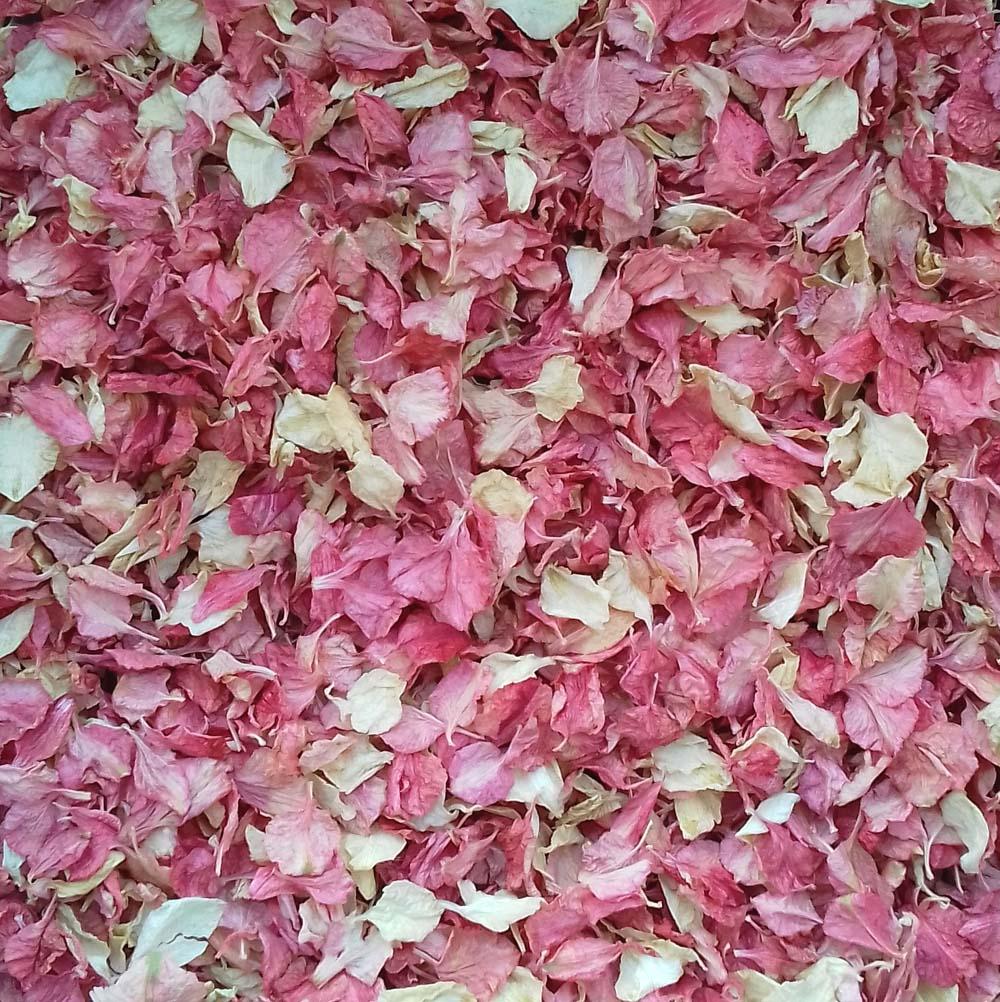 Raspberry Ripple Confetti Petals