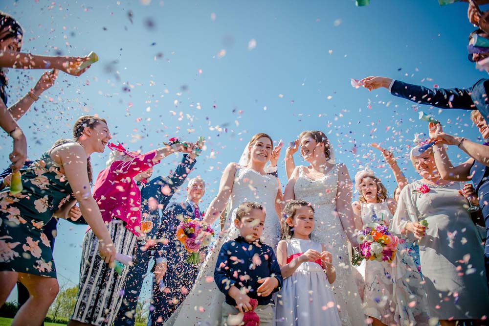 A beautiful blue sky background to a Rainbow Delphinium confetti throw