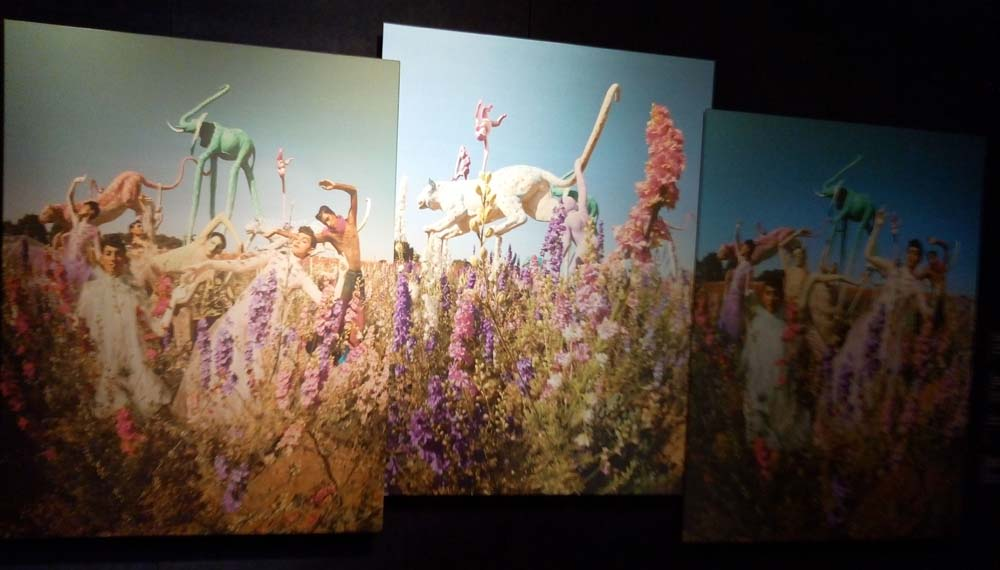 Panoramic photo from the Tim Walker Wonderful Things featuring The Confetti Flower Field