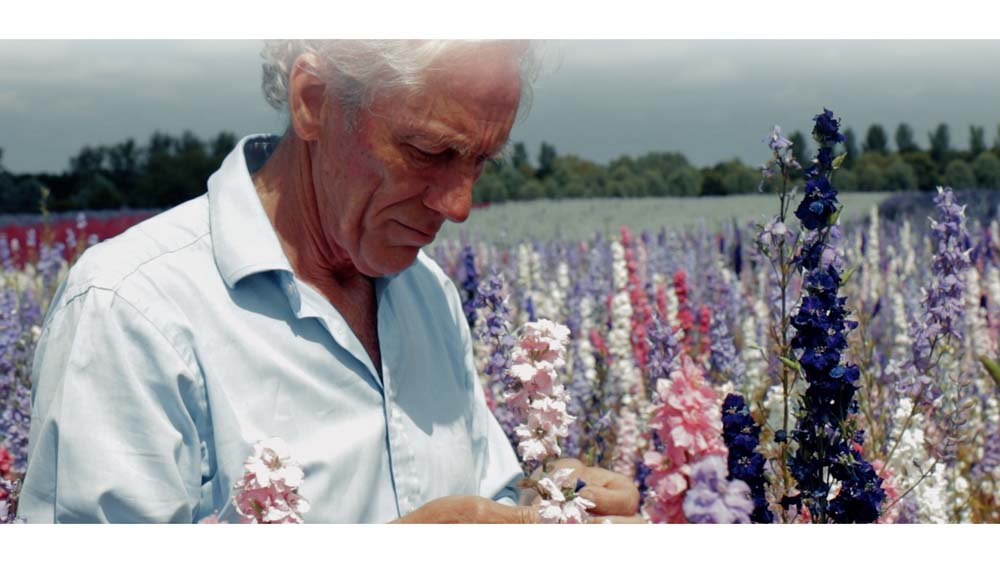 Charles Hudson in the Wick Confetti Field