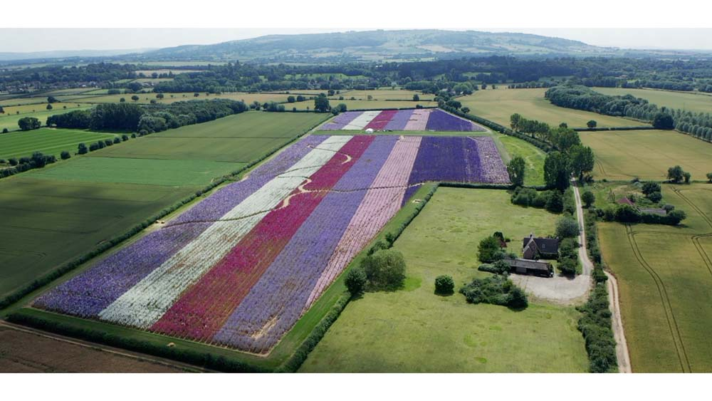 Wick Confetti Field from the air with view to Bredon Hill