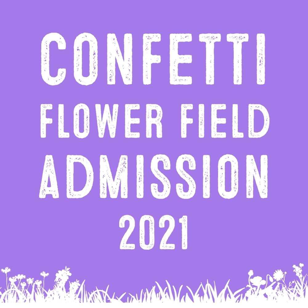 confetti flower field 2021