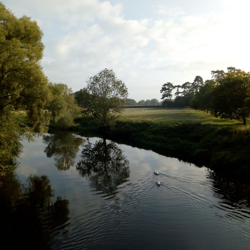 the river avon on the wyke manor estate